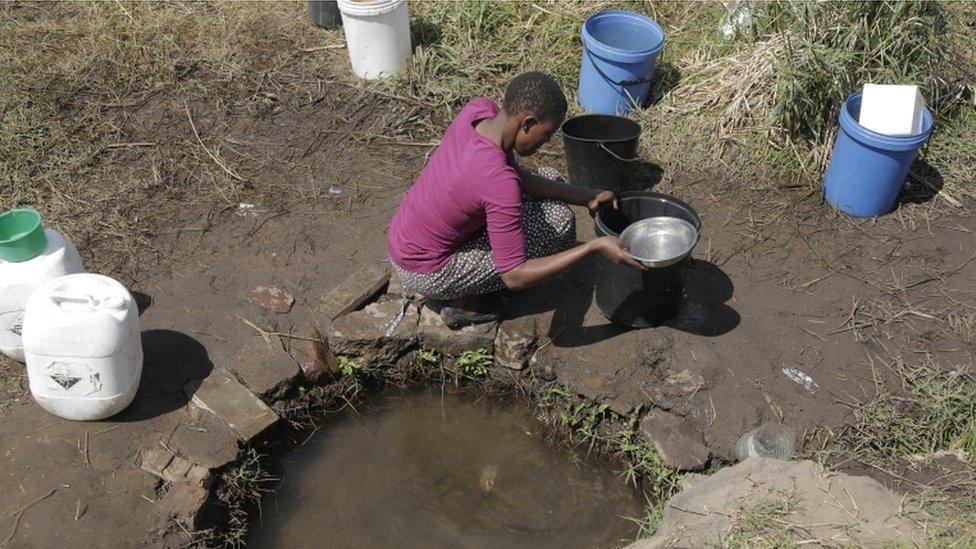 Suša u Zimbabveu/EPA