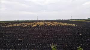 2020-totalni-herbicidi.jpg (117 KB)